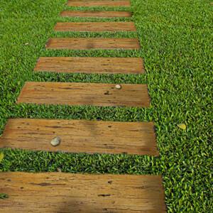 Garden Step Pavers Path